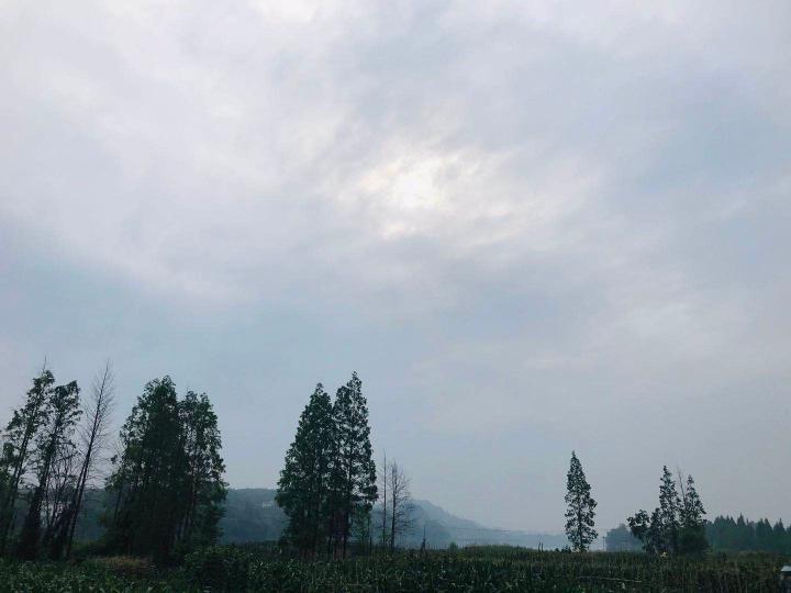 化龙村5.jpg