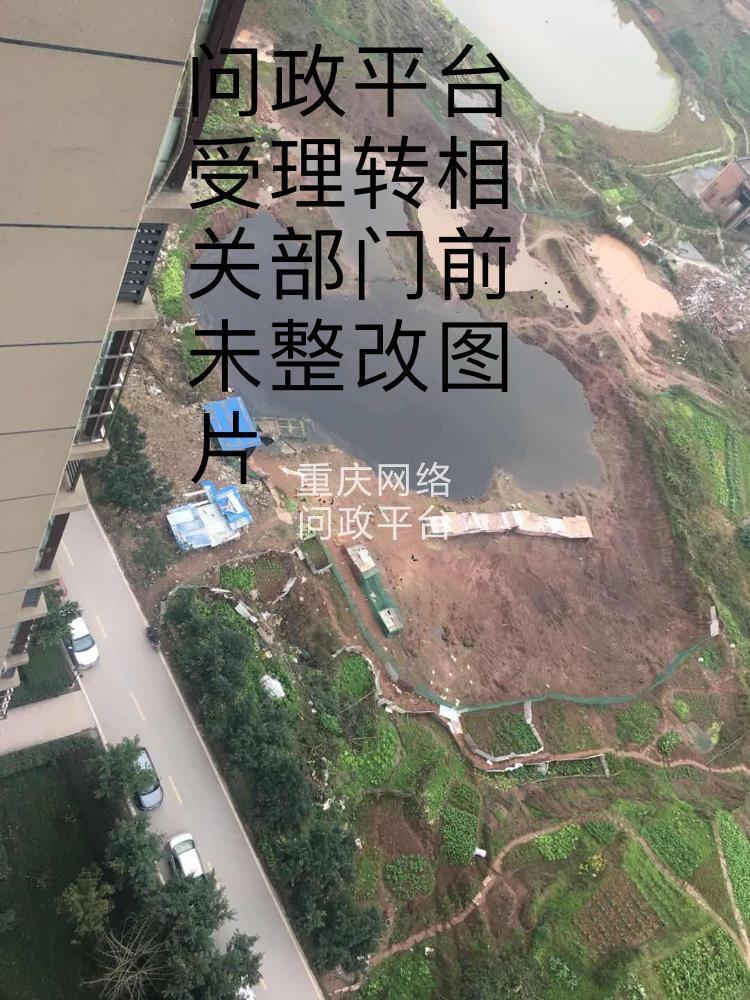江津区白沙镇工业园区荣华锦鹤江城小区业主在旁边空地乱搭建养殖场