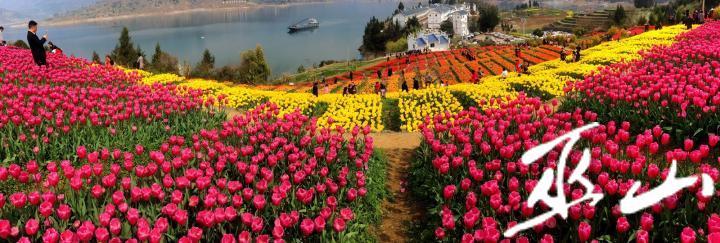 《春滿大昌湖》盧先慶攝.JPG