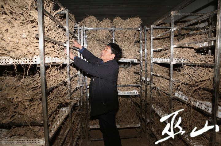 图为红椿土家族乡红椿村村民们正在焙制中药材牛膝。.JPG